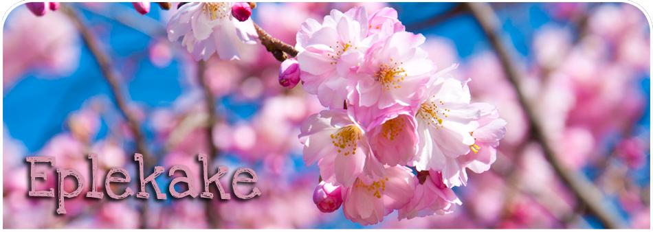 Eplekake.org